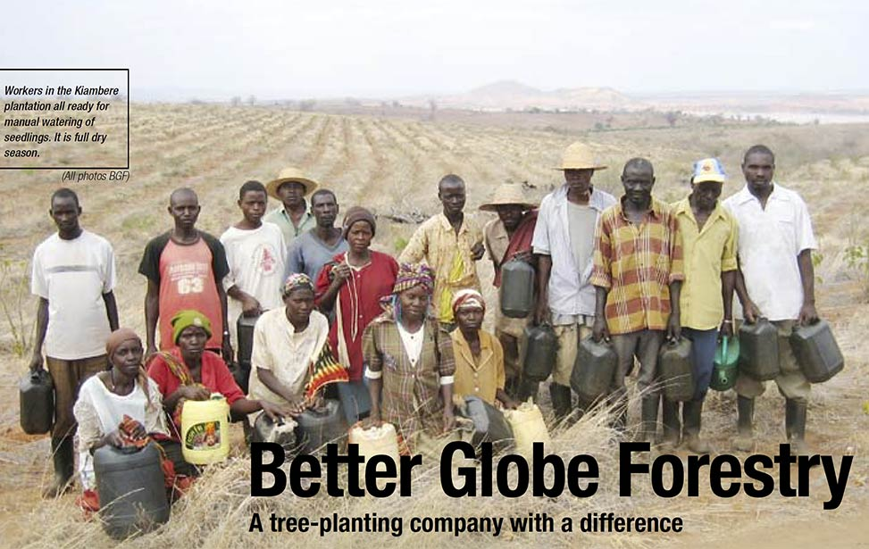 Better Globe Forestry - A tree-planting company with a difference, Miti 10