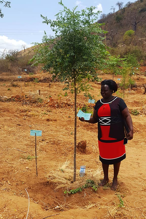 Principal with her mukau tree
