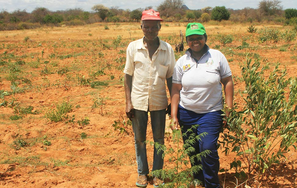 Agroforestry agent Florence Muthui