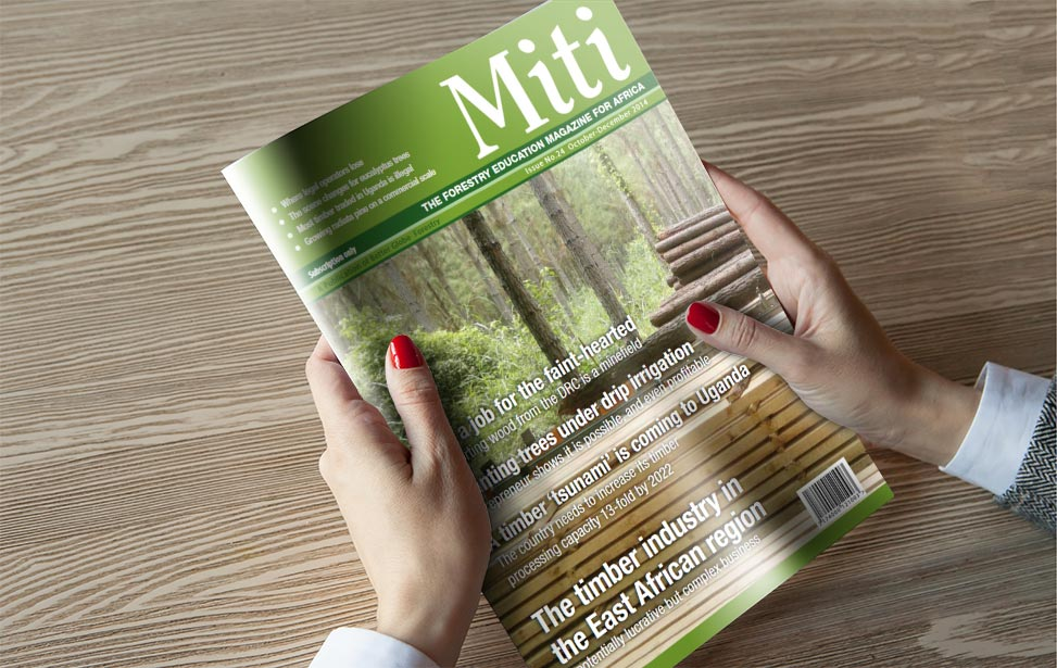 Miti tree business magazine