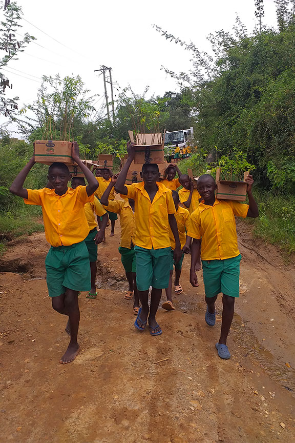 Students carrying seedlings