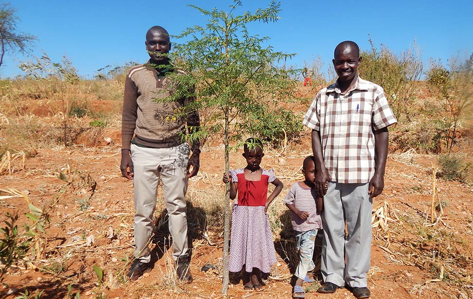 Agroforestry Agent Inspects Contract Farmer's Land