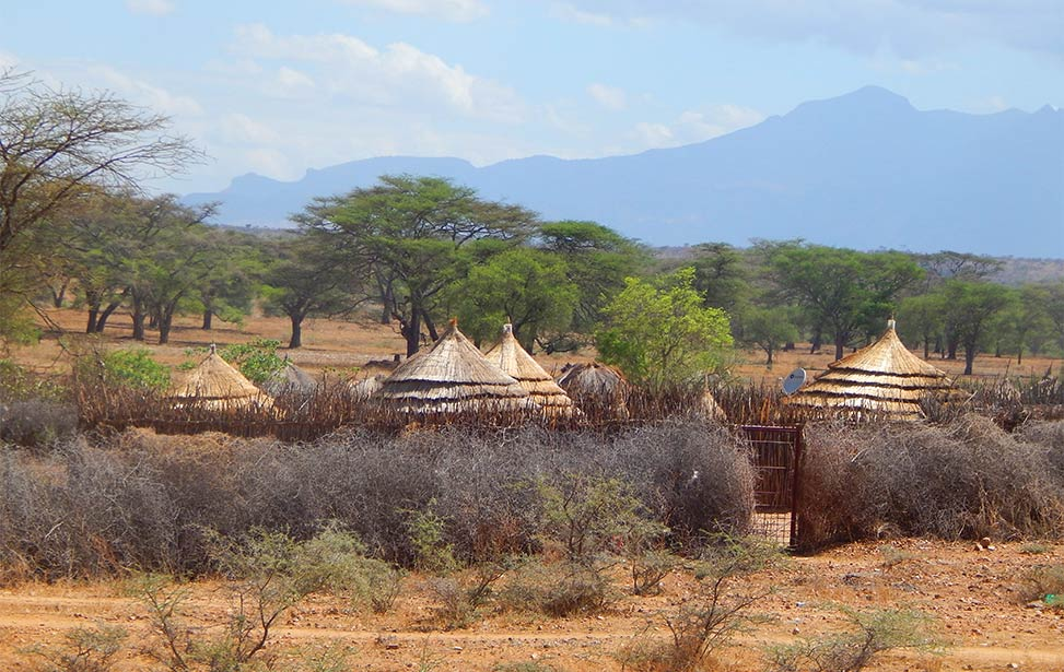 Better Globe Forestry ventures into Karamoja