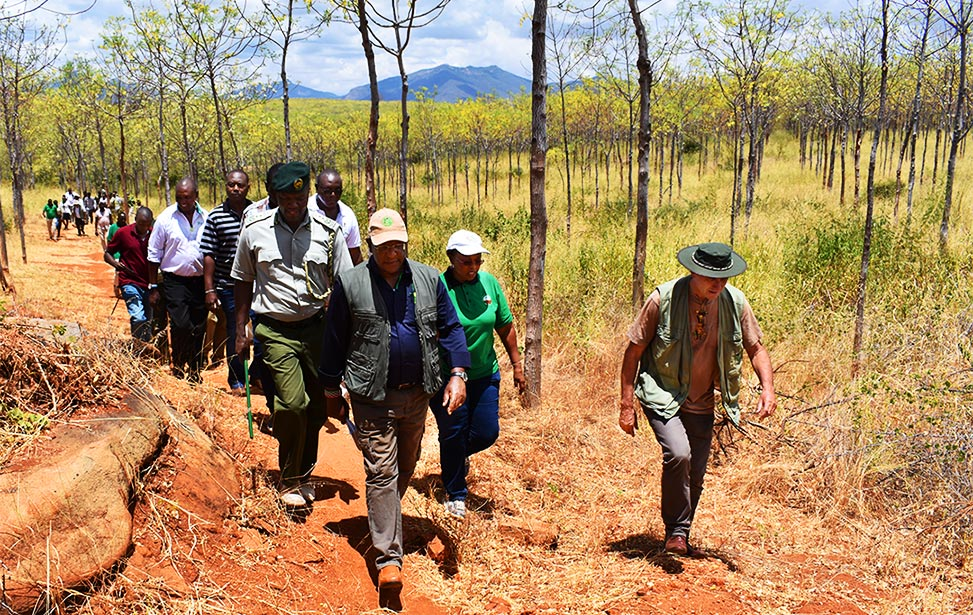 Cabinet Secretary visits our Kiambere Plantation