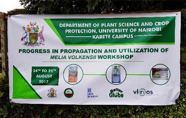 Workshop to discuss progress in propagation and utilization of Melia volkensii